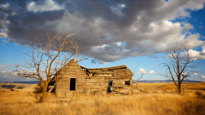 abandoned farm surrounded by dried up grass