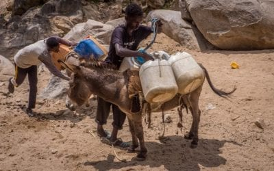 The Eritrea Water Crisis: All You Need to Know