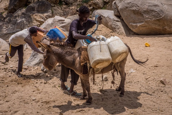 Drought in the Horn of Africa: The Eritrea Water Crisis